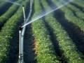 农民对购买节水灌溉机械缺少积极性的原因在哪里?