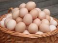 宝宝多大可以吃鸡蛋?宝宝吃鸡蛋需要注意些什么?