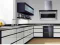 嵌入式厨电企业需因地适宜进行产品布局