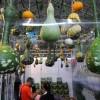 第六届中国(山西)国际农用航空植保 及农药、肥料、种子展览会