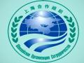 上合青岛峰会,安全合作新举措