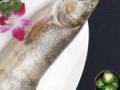 """2019年上海水产海鲜博览会""""鱼""""您相约去""""尝鲜"""""""