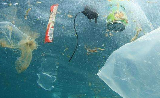 殃及美国!日本6万吨垃圾漂向太平洋 网友:宣扬垃圾分类原来全丢海里了