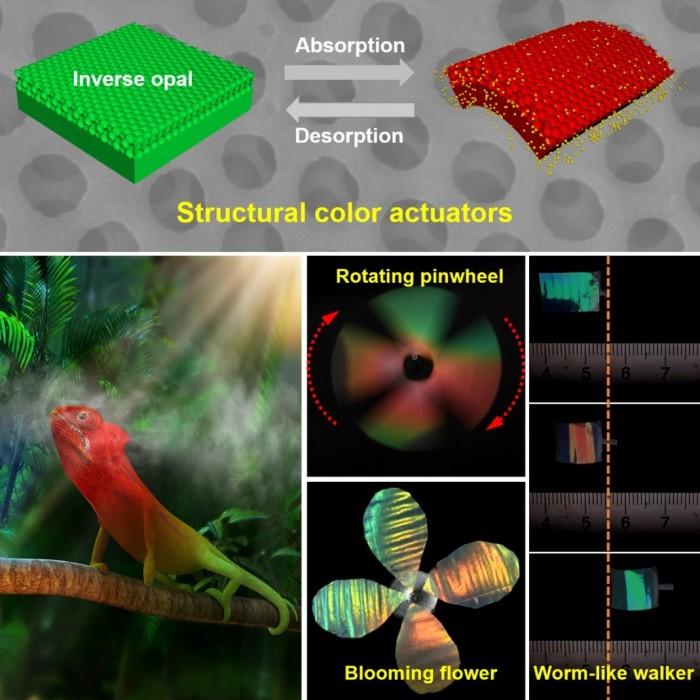 研究院研發出一種仿變色龍軟體驅動器,進而實現與環境交互