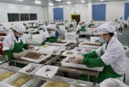 2019第十六届中国国际食品加工和包装机械展览会