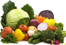 2019第十九屆北京國際有機食品和綠色食品產業博覽會