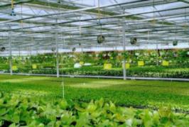2020中国智慧农业发展大会簪中国国际智慧农业博览会